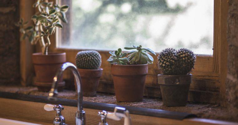 Rutinas de limpieza y productos favoritos para la cocina